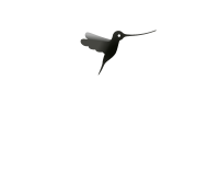 logo-lasertam-beauty-transparente